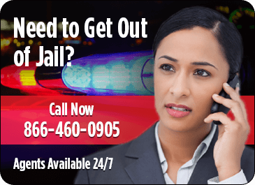 Bail Bonds Agent